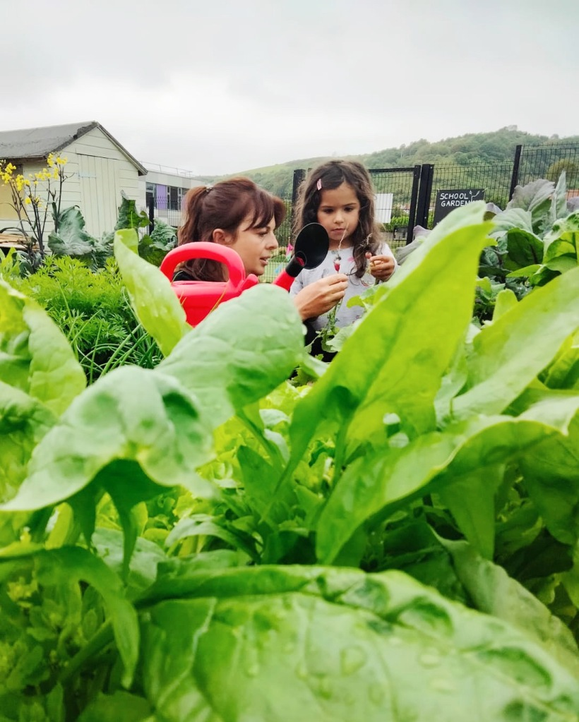 Rachel and Rose in the Locavore Garden at Martello Primary. They are looking at a freshly picked radish. There are spinach leaves growing in the foreground.